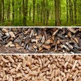 Le bois granule la production Image libre de droits