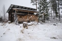 Le bois a jeté en hiver image stock