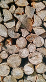 Le bois note la texture Photo libre de droits