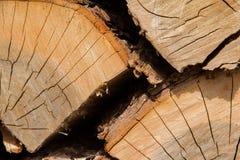 Le bois note le plan rapproché Photographie stock