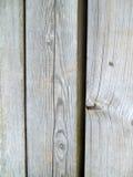Le bois superficiel par les agents Photographie stock libre de droits