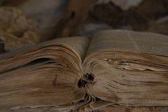 <b>Le bon livre</b> Image stock