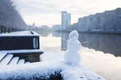 Le bonhomme de neige sur une rive Photo libre de droits