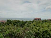 le bord de la mer de guantouling Forest Park national dans Beihai images libres de droits