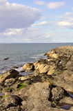 le bord de la plage rocheuse image stock