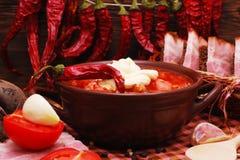 Le borscht ukrainien traditionnel de soupe à betterave photos stock