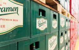 Le bottiglie di birra vuote aranged nei pacchetti nel lotto di stoccaggio della fabbrica di birra Fotografia Stock