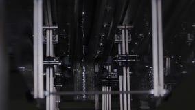 Le bottiglie di plastica stanno muovendo lungo il trasportatore per riempire archivi video