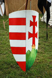 Le bouclier du chevalier Photo libre de droits