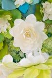Le bouganvilla de papier de Flower Photographie stock libre de droits