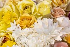 Le bouganvilla de papier de Flower Images libres de droits