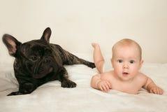 Le bouledogue français avec un petit bébé d'enfant a étonné le mensonge sur mon lit image libre de droits