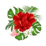 Le bouquet avec l'arrangement floral tropical de fleurs, avec la belle ketmie rouge, paume, philodendron et vintage de Brugmansia Photo libre de droits