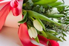 Le bouquet blanc de tlips avec beaucoup de vert part avec les bandes rouges Photos libres de droits