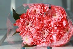 Le bouquet coloré de fleurs de rose de rose est des repos d'une combinaison sur le whi Photographie stock