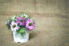 Le bouquet d'un amour dans la brume fleurit Images libres de droits