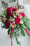 Le bouquet de jeune mariée du mariage fleurit les pivoines rouges et beiges, le lis, verdure dans le vase sur le fond blanc vin d Image libre de droits