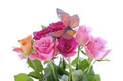 Le bouquet de la rose multi de couleur bourgeonne avec le papillon Images stock