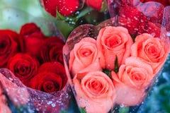 Le bouquet de roses fraîches avec de l'eau se laisse tomber en vente à la marque de fleur Photographie stock libre de droits