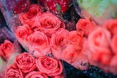 Le bouquet de roses fraîches avec de l'eau se laisse tomber en vente à la marque de fleur Image stock