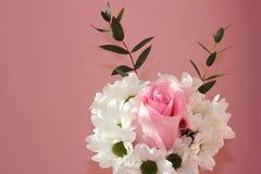 Le bouquet des chrysanthèmes blancs et un se sont levés sur un fond rose Vacances et concept d'amour Saint-Valentin, le 8 mars et photographie stock