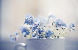 Le bouquet des myosotis des marais bleus se ferment dans une tasse Images stock