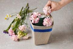 Le bouquet des oeillets et du freesia fleurit dans une boîte - cours Images libres de droits