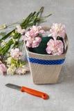 Le bouquet des oeillets et du freesia fleurit dans une boîte - cours Image stock