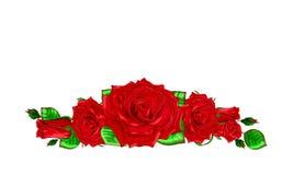 Le bouquet des roses rouges avec des feuilles et des bourgeons sur un backgro blanc Photographie stock libre de droits