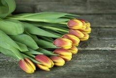 Le bouquet des tulipes fleurit sur un fond en bois Juste plu en fonction Foyer sélectif Photographie stock