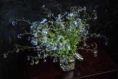 Le bouquet du myosotis des marais dans le petit pot en verre sur le tabouret en bois, fond fonc? images stock