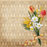 Le bouquet du ressort fleurit à un arrière-plan en osier illustration libre de droits