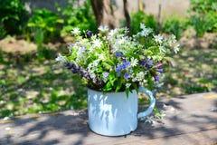 Le bouquet du ressort fleurit dans une tasse de fer Images stock