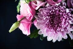 Le bouquet du rose fleurit le plan rapproché sur le fond noir Image stock