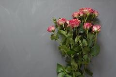 Le bouquet du rose a repéré des roses de buisson sur le fond gris Vue supérieure Carte romantique avec amour Copiez l'espace Photo stock