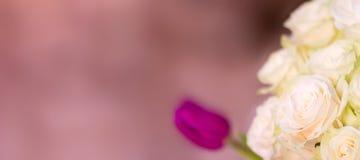 Le bouquet du ` s de jeune mariée, les roses blanches, les tulipes, les fleurs sensibles, l'utilisation comme fond ou la texture, Photos stock