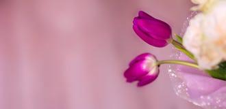 Le bouquet du ` s de jeune mariée, les roses blanches, les tulipes, les fleurs sensibles, l'utilisation comme fond ou la texture, Image stock