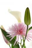 le bouquet fleurit la source Image libre de droits