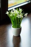 le bouquet fleurit le vecteur d'illustration Photos libres de droits