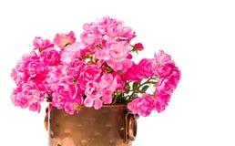 Le bouquet rose de roses dans un métal peut sur le blanc Photographie stock