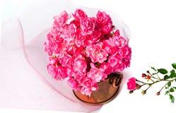 Le bouquet rose de roses dans un métal peut sur le blanc Images stock