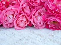 Le bouquet rose de roses sur le blanc rustique a peint le fond Photographie stock
