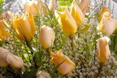 le bouquet s'est levé Photo libre de droits