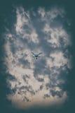 Le bourdon est un chevalier de ciel Image libre de droits