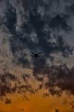Le bourdon est un chevalier de ciel Photo libre de droits