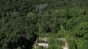 Le bourdon est une vue d'un bâtiment abandonné d'architecture classique avec les bosquets denses de la forêt en Russie Manoir banque de vidéos