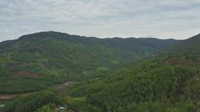 Le bourdon montre la gorge imagée entre les collines vertes à vers le bas