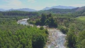 Le bourdon se lève au-dessus de la rivière étroite de montagne parmi la jungle
