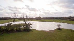 Le bourdon a tiré d'un lac dans la campagne de Leicestershire Image libre de droits
