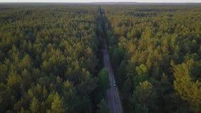 Le bourdon a tiré d'une voiture mobile sur une route dans la forêt clips vidéos